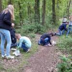 Activiteiten in het bos